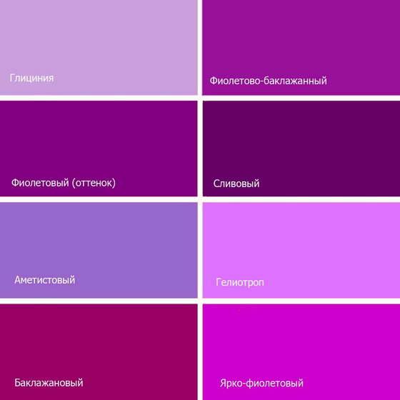 Холодные оттенки: индиго, сливовый, аметистовый, гелиотроп, пурпурный, глициния; теплые – баклажановый, лиловый.
