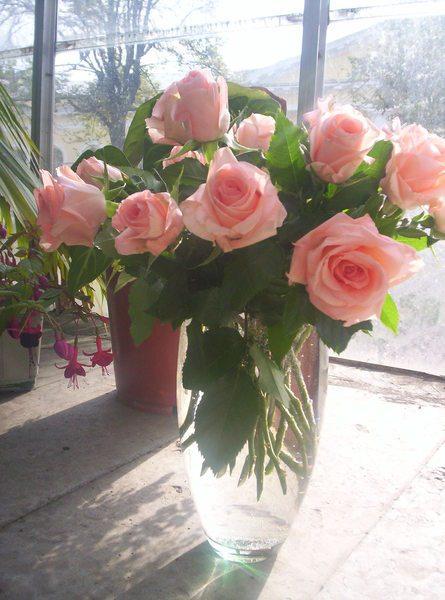Первое, что вы увидите утром – розовый букетик