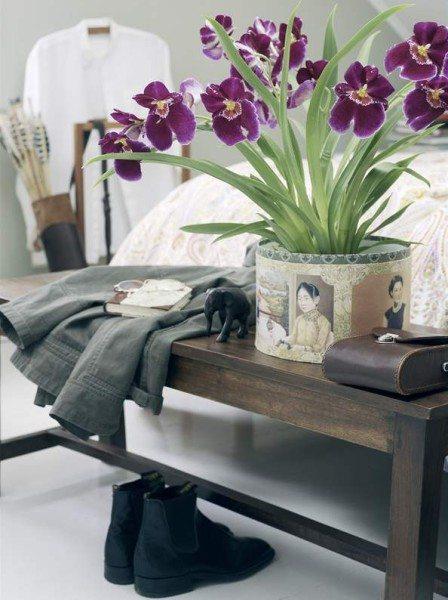 В современную спальню можно внести такой экзотический живой атрибут.